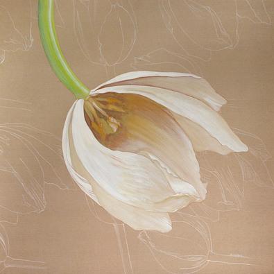 Olivia Celest Blanchard Falling Tulip