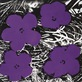Warhol andy flowers 1965 4 purple medium