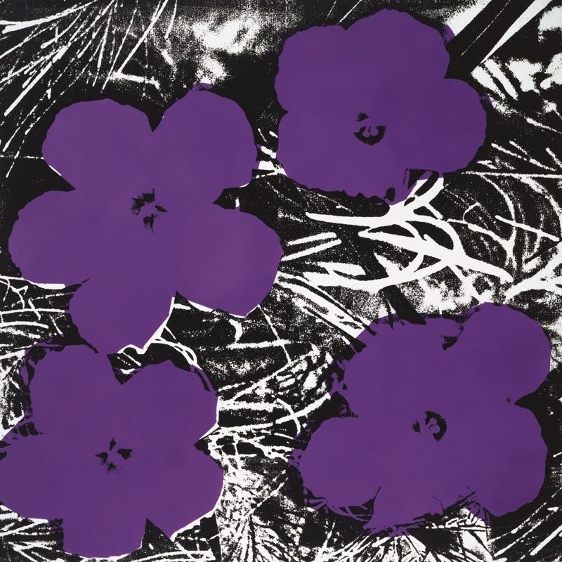 andy warhol flowers 1965 4 purple poster kunstdruck bei. Black Bedroom Furniture Sets. Home Design Ideas