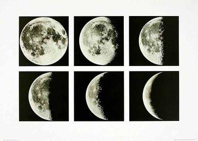 Shigemi Numazawa Moon Cycle Japan
