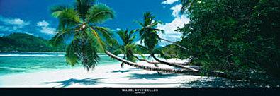 Harris Granville Mane Seychelles