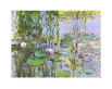 Monet claude seerosen ausschnitt 48415 medium