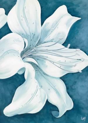 Kaye Lake Wistful Lily II