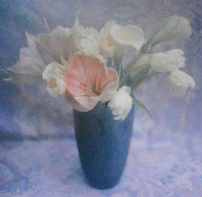 Paule Trucchi Blumen