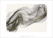 Matisse henri nu couche de dos 1944 medium