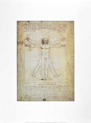 Leonardo da Vinci Schema Delle Proporzioni