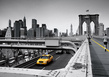 Reis thomas yellow cab medium