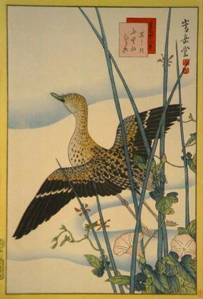Sugakudo schnepfe  glatte binse und winde large