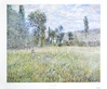 Monet claude across the meadow medium