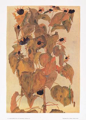 Egon Schiele Sonnenblumen S 15