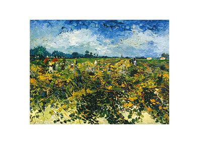 Vincent van Gogh Vine Yard