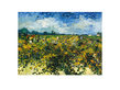 Van gogh vincent vine yard medium