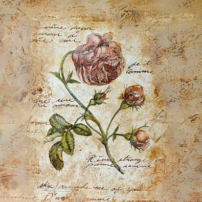 Steve Leal 4er Set 'Rouge Rose' + 'Iris' + 'Antique Rose' + 'Hydrangea'