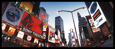 Alexander Ehhalt Birds on Broadway (Times Square)