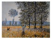 Monet claude felder im fruehling 55034 medium