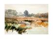 Pieter van Hoof Landschappen I