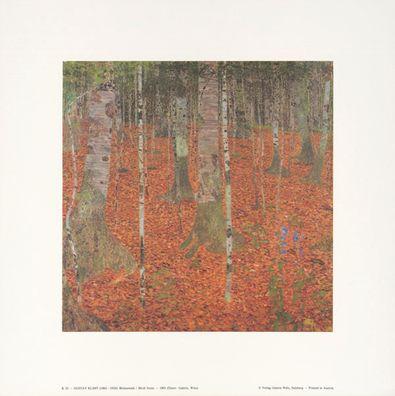 Gustav Klimt Birkenwald K 32