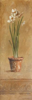 Fabrice de Villeneuve Narcissus Frise