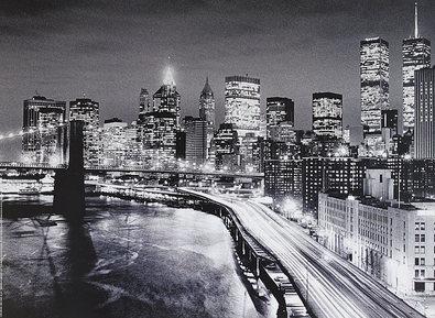 Alan Delaney Brooklyn Bridge, New York
