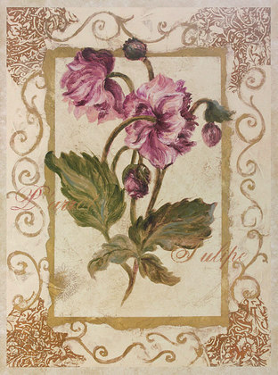 Shari White 2er Set 'Parrot Tulipe' + 'Lavatere fleurs'