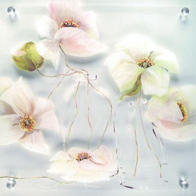 Annelies Buergin Blumen auf Plexiglas Weiss