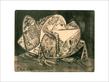 Picasso pablo der frosch medium