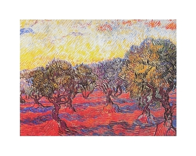 Vincent van Gogh Olivenhain