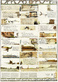 Janssen horst umsoonst details 42582 medium