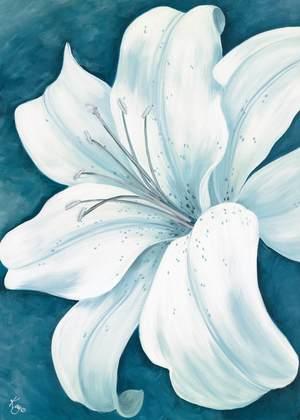 Kaye Lake Wistful Lily I