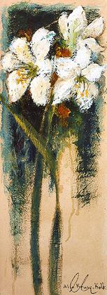 Alie Kruse-Kolk Amaryllis I