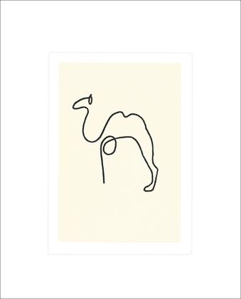 Pablo Picasso Kamel