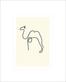 Picasso pablo kamel medium