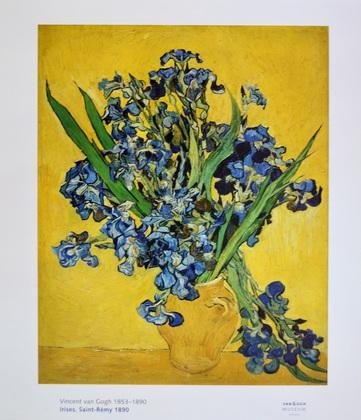 Vincent van Gogh Stillleben mit Irisstrauss