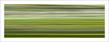 Boissiere henri vitesse n 11 2012 56260 medium