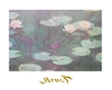Monet claude seerosen 49071 medium