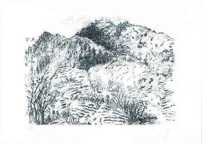 Guenter Grass Italienische Landschaft, 2009