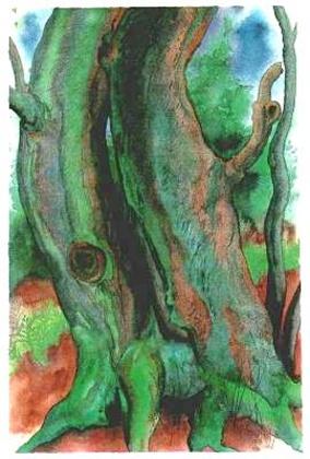 Guenter Grass Bäume II