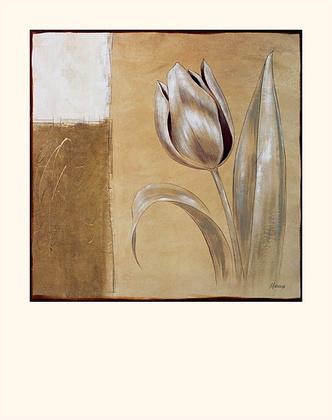 Julian Marcoux 4er Set 'Tulip I' + 'Orchid I' + 'Poppy I' + 'Iris I'