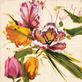 Antonio Massa Spring Tulips