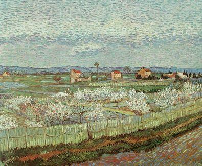 Vincent van Gogh Bluehender Obstgarten
