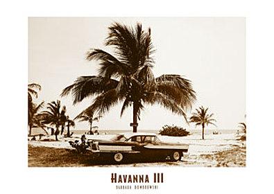 Barbara Dombrowski Havanna III