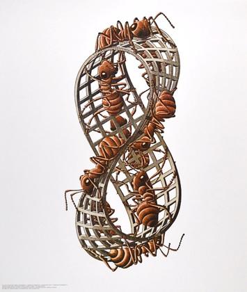 MC Escher Moebius Streifen II