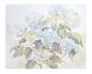 Eileen Crawfurd Hydrangea