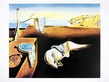 Dali salvador the persistence of memory medium