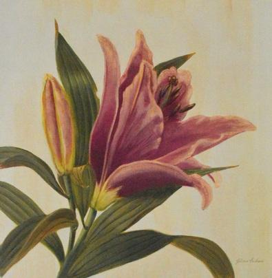 Gloria Eriksen Garden Lily