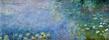 Claude Monet Seerosen II