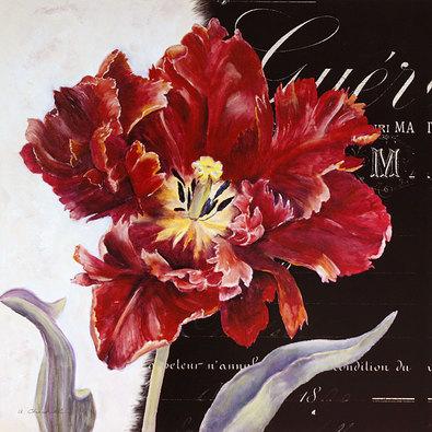 Alexandra Churchill 2er Set 'Passion Tulip - Scarlet' + 'Passion Tulip - Plum'