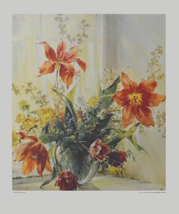 Frieder Wegert Tulpen