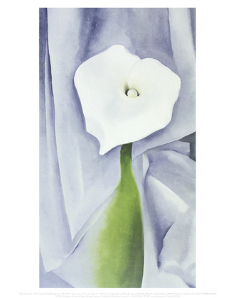 Georgia O Keeffe Calla Lily on Grey, 1928