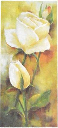 Rian Withaar Blume 3